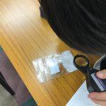 塩の結晶を観察